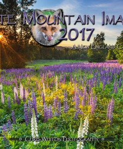2017 Calendar from White Mountain Images