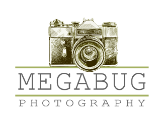 MegaBug Photography